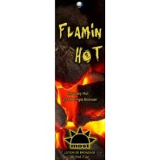 Flamin Hot Packet